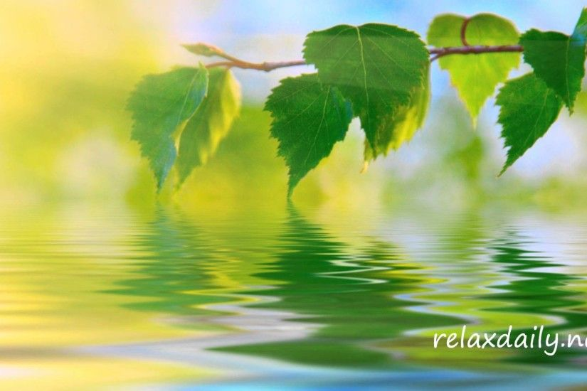 Calm Music - Slow, Peaceful, Background Music - relaxdaily N°042 - YouTube