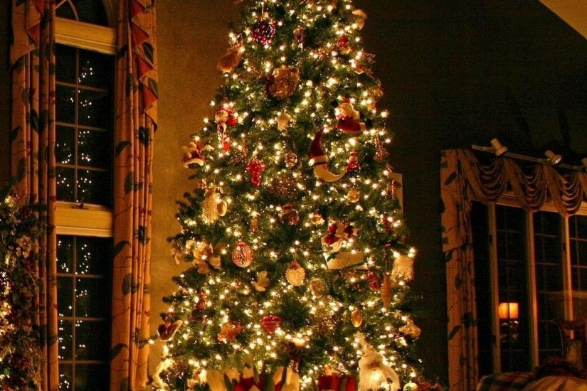 2048x2048 Wallpaper christmas tree, ornaments, fireplace, christmas  decorations, flowers, home,