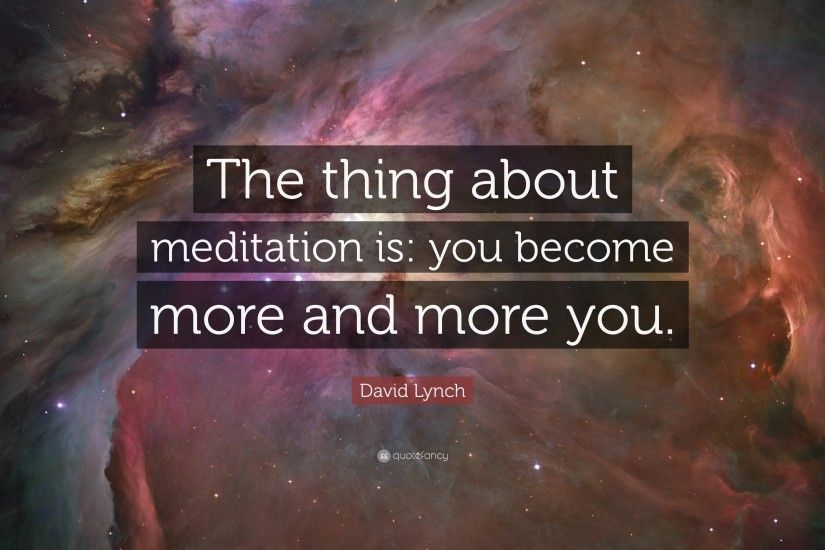 "David Lynch Quote: ""The thing about meditation is: you become more and more"
