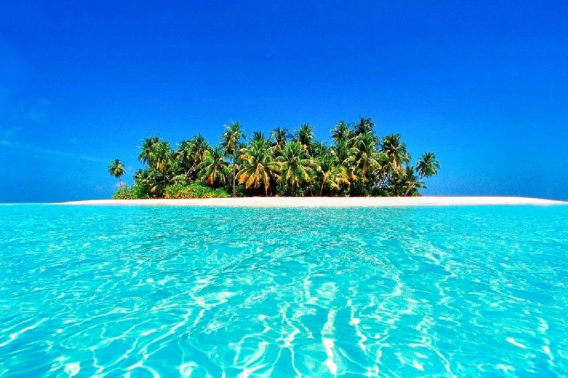 Earth - Tropical Summer Horizon Azure Turquoise Palm Tree Island Beach  Sunny Maldives Wallpaper