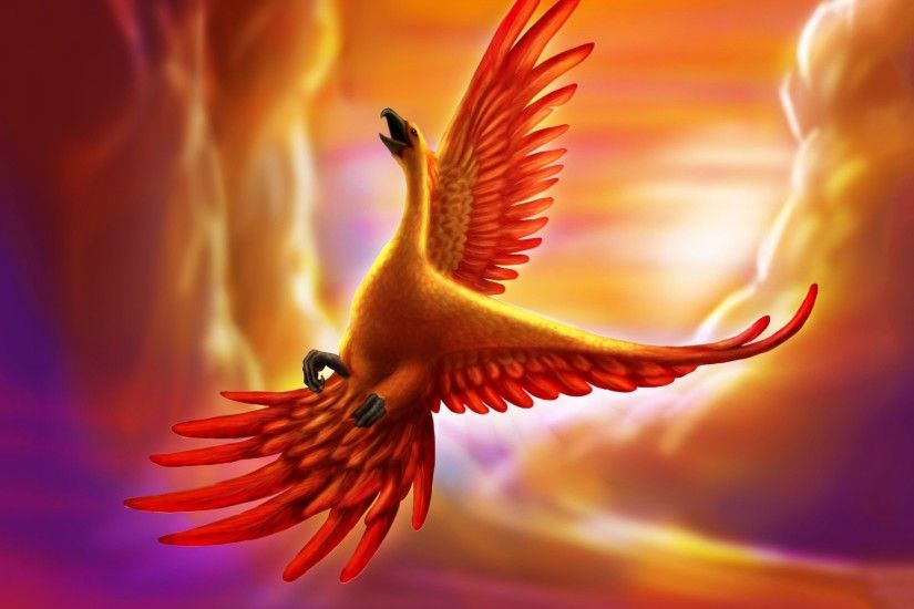 Fire phoenix bird wallpaper HD.
