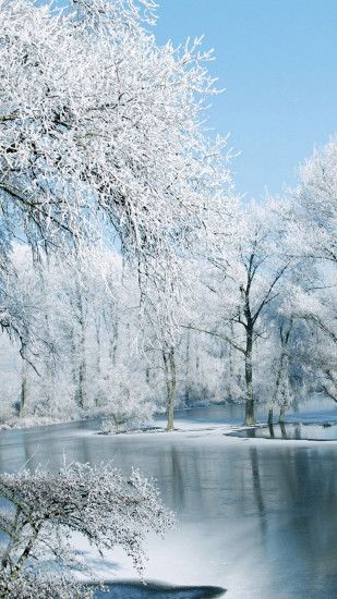 Winter: Snow Winter Forest Beautiful Garden Lake Scenery Nature . ...