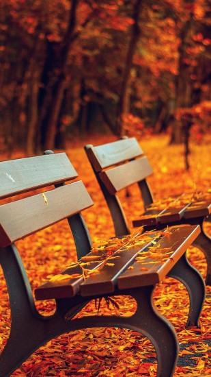 Nature Autumn Fall Leaves On Roadside Bench #iPhone #6 #pus #wallpaper