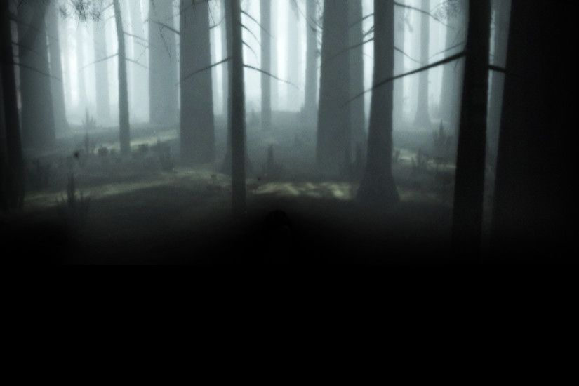 Image - The Path Background Forest White.jpg | Steam Trading Cards Wiki |  FANDOM powered by Wikia