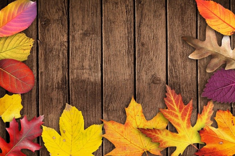 Two new free Autumn pictures shared under CC0 license by courtesy if two  talented photographers · Save the Autumn leaves wallpapers from listed  links in 4K, ...