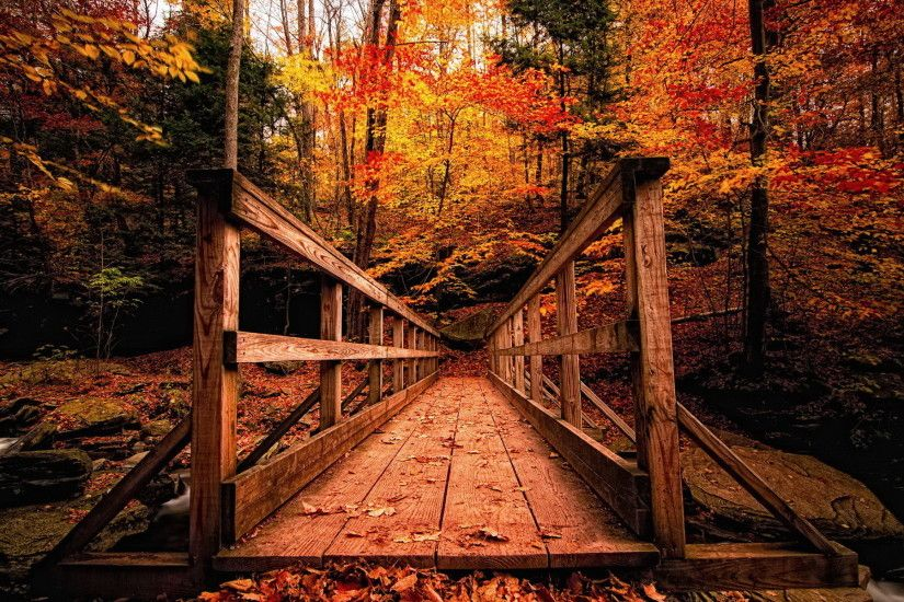 Autumn Landscapes wallpapers and stock photos