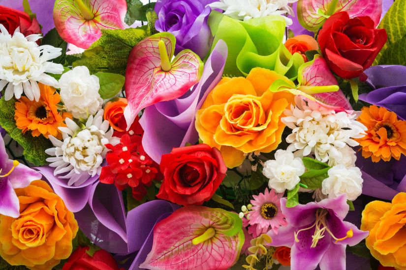 Colorful Flowers Wallpaper 7694