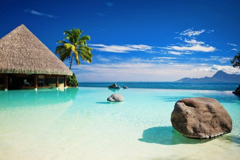 28 tropical retro backgrounds wallpapers images pictures