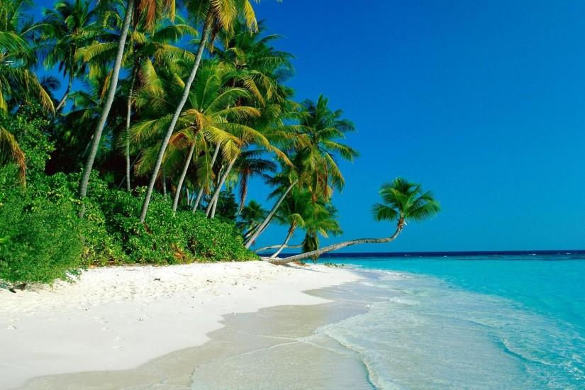 Tropical Island Beach Best Full HD Wallpaper Backgrounds