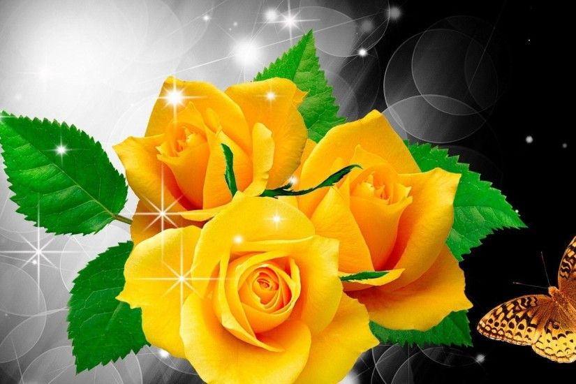 Flowers For > Yellow Roses Wallpaper Hd