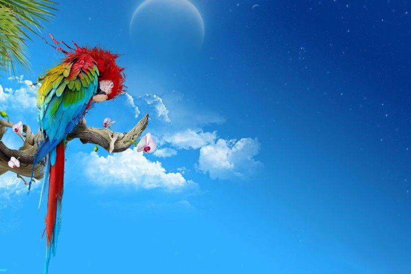multicolor Moon parrots skyscapes Scarlet Macaws wallpaper