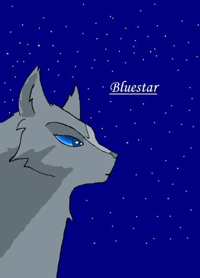 Make Your Own Warrior Cat! images Fan Art : Bluestar HD .