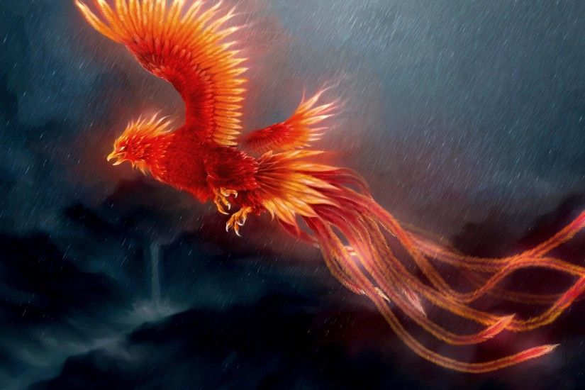 PHOENIX FLIGHT IN RAIN WALLPAPER - (#101307) - HD Wallpapers .