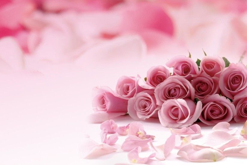Pink-roses-picture-HD-Desktop-Wallpaper-1920x1080-pink-