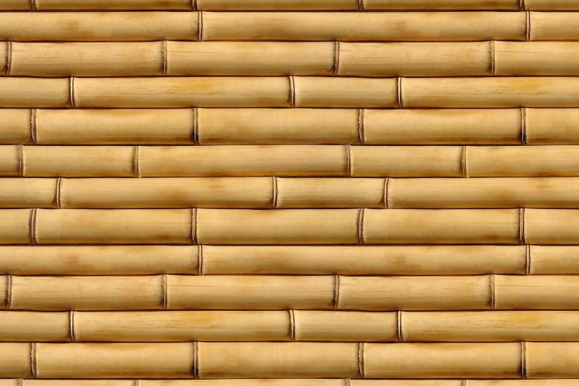 top bamboo wallpaper 2560x1600