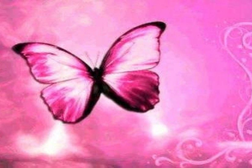 Black and pink butterfly wallpaper - photo#13