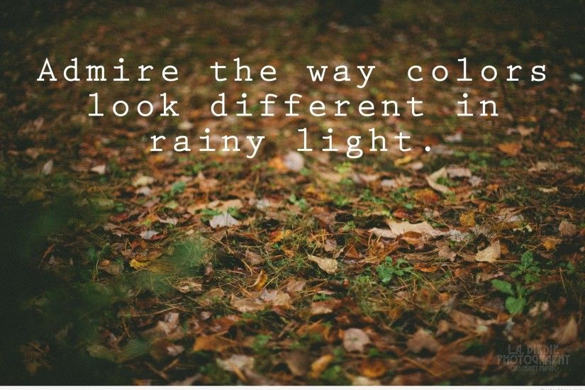 Rainy Day Wallpaper With Quotes In Hindi Amazing Rainy Day Quotes, Pics, Images And
