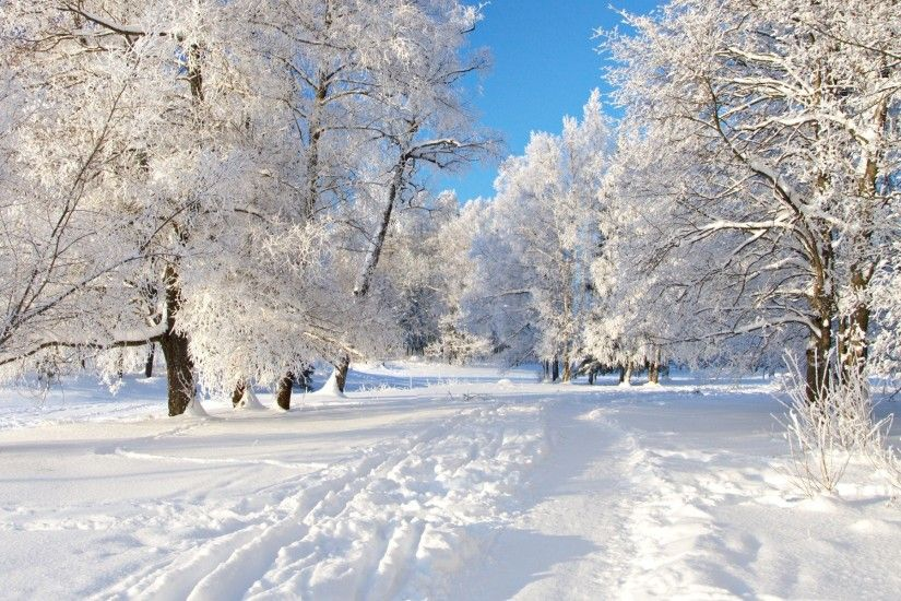 Winter Nature Wallpaper Images