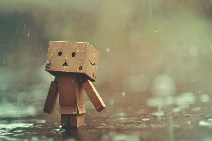 danbo rain wallpaper 2218