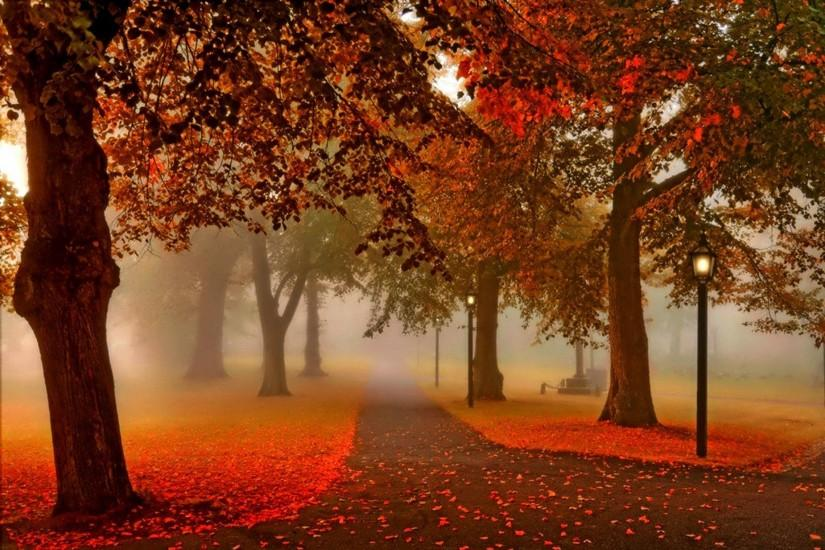 most popular autumn background 1920x1280 for retina
