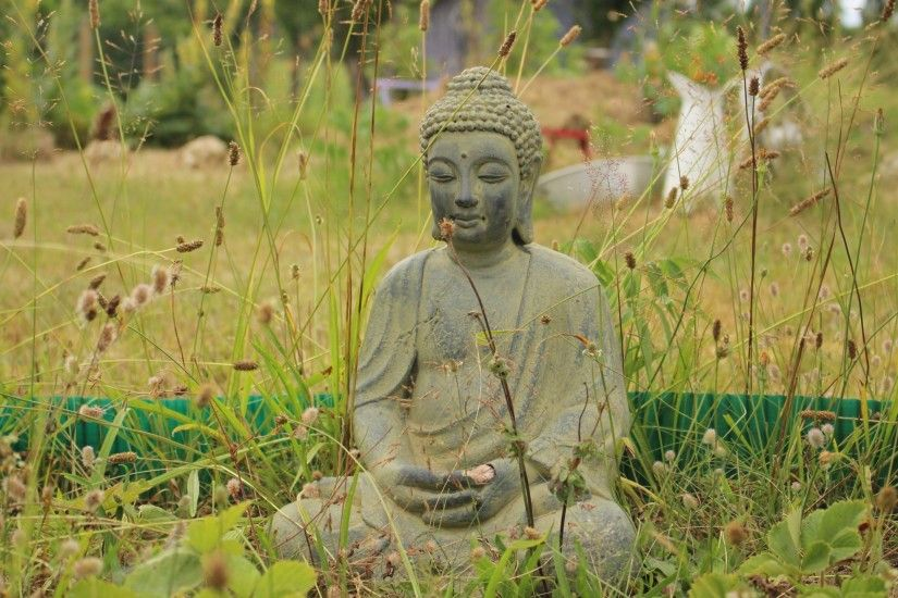 2560x1440 Wallpaper buddha, buddhism, meditation, grass