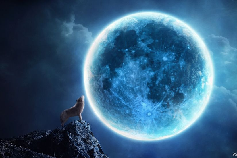 high resolution, dogs, mood, animals, sky, moon, wolf,howling