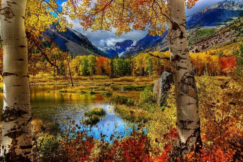 9. free-autumn-wallpapers-for-desktop9-600x338