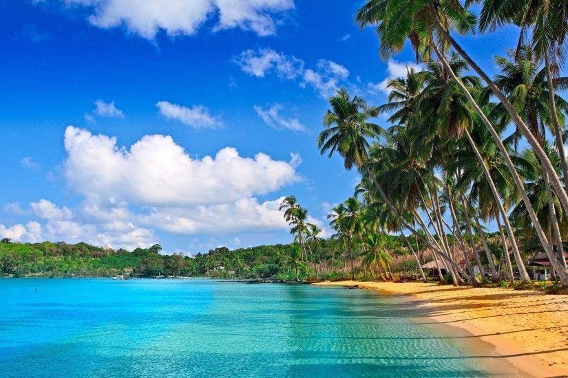 2560x1600 Tropical Colors HD Wallpapers - HD Wallpapers Inn