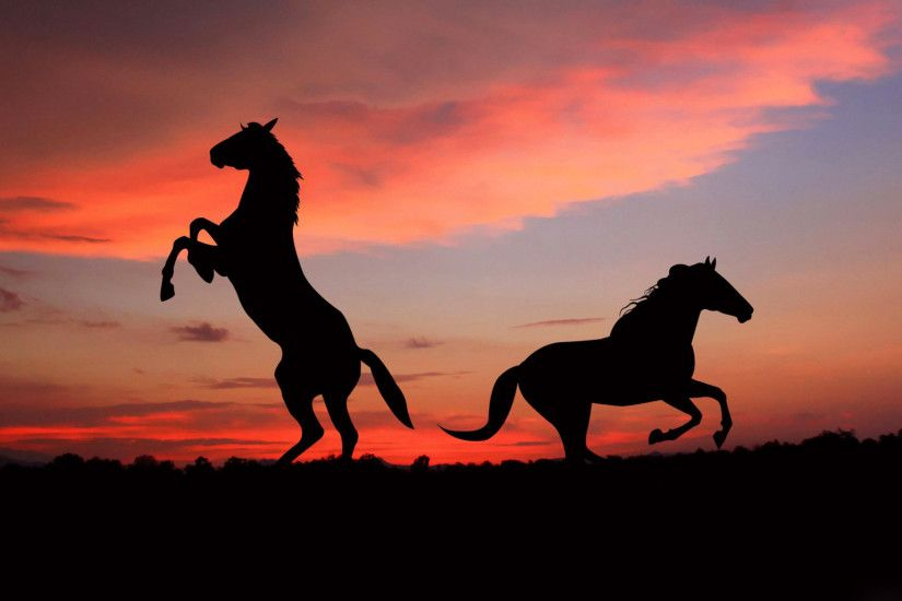 Preview wallpaper horse, silhouette, shadow, sunset 2048x1152