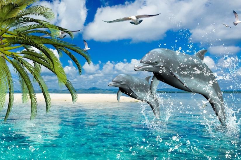 Dolphin Desktop Background