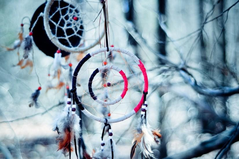 Dream Catcher native american artistic indian trees branch limb .