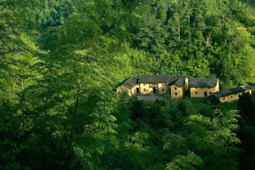 Amazing Home in Green Forest Wallpaper | HD Wallpapers