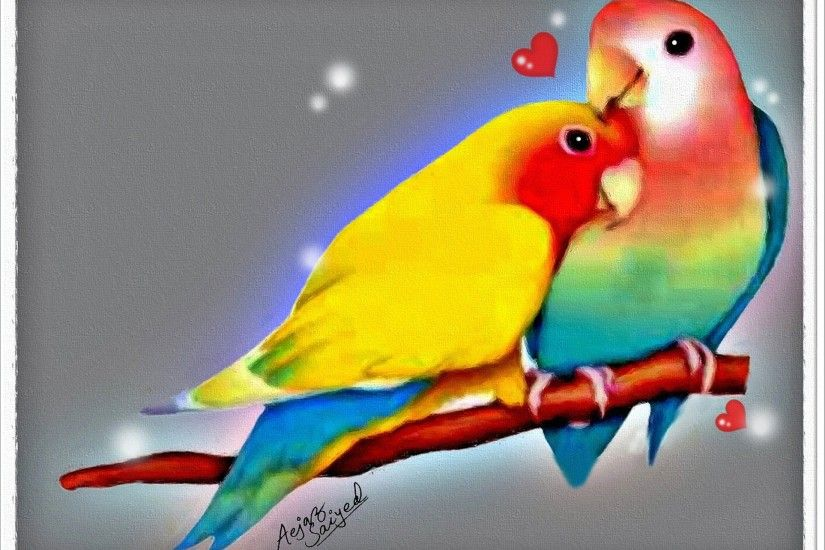 Wallpaper Animal HD of love birds images 11
