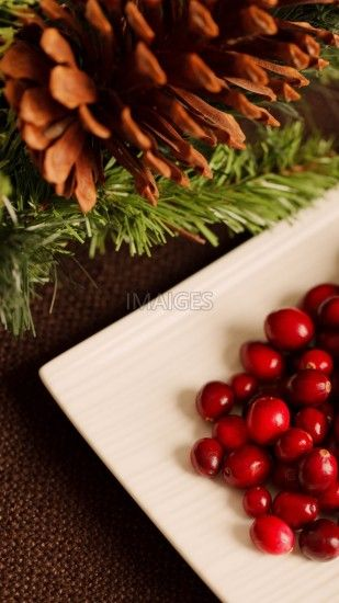 Christmas, Background, Berry, Cranberry