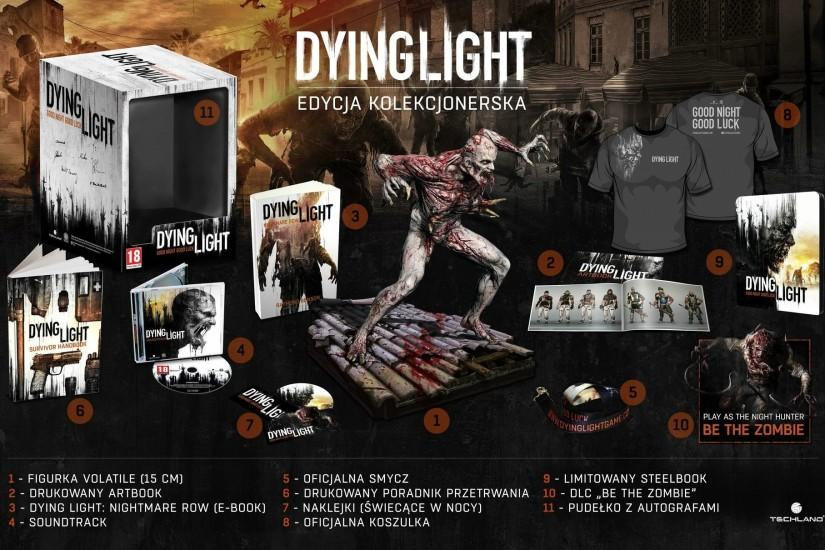DYING LIGHT horror survival zombie apocalyptic dark action 1dlight rpg  poster wallpaper | 1920x1210 | 617133 | WallpaperUP