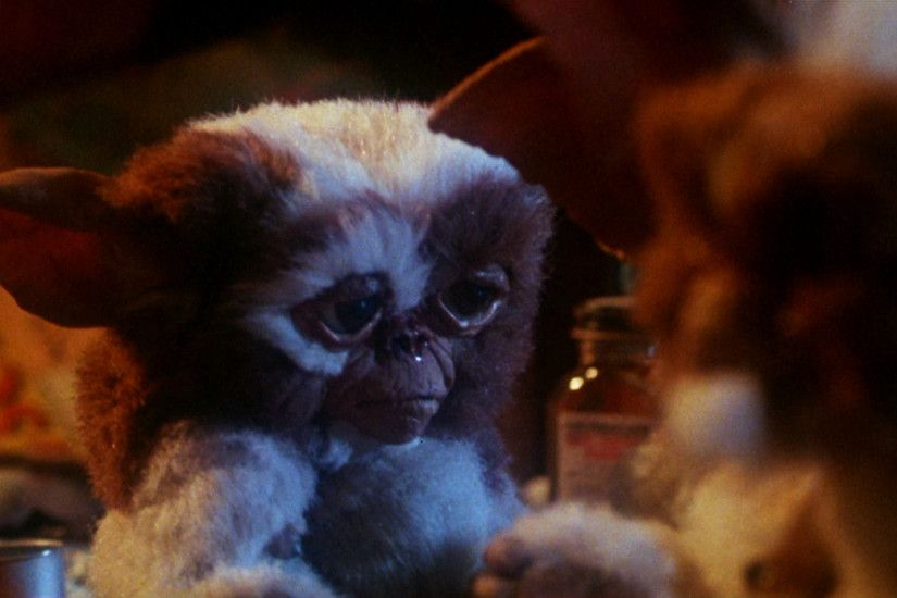 Coulda Been a Contender…. Night Skies, E.T.: The Extra-Terrestrial 2 and  Gremlins