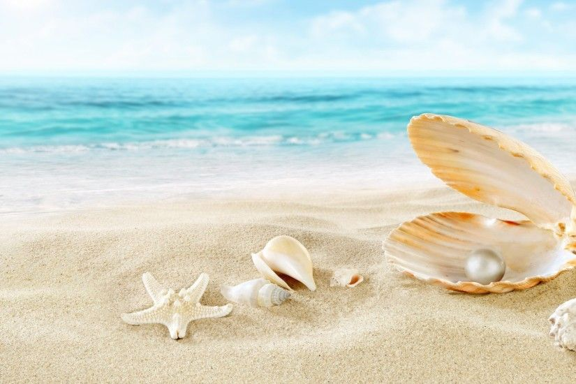Beach Sea Shells Seashells Sand Perl Wallpaper Sun
