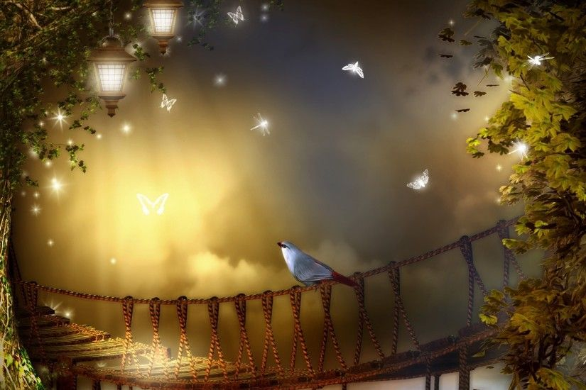 Mist Lights Trees Rope Papillon Summer Bird Autumn Leaves Night Dragonfly  Light Bridge Sky Glow Evening