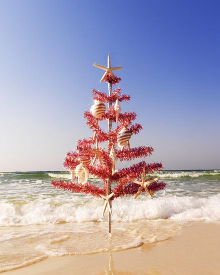 Red Christmas Tree on the Beach. Christmas at the Beach: http://