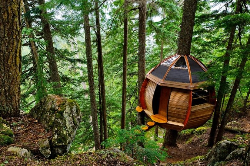 3840x2160 Wallpaper lodge, tree unusual, wood, shelter, sphere