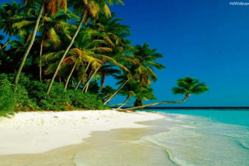 Collection of Beach Backgrounds, Beach HD Wallpapers Beach HD Wallpapers  Wallpapers)