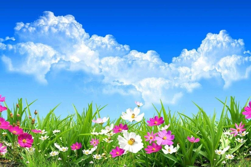 Spring Flowers Wallpaper (26 Wallpapers)