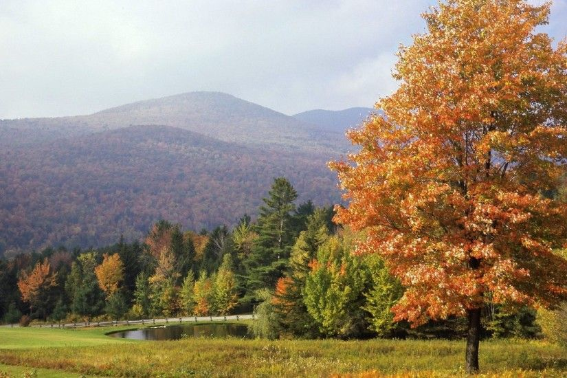 1920x1080 Wallpaper park, vermont, trees, autumn