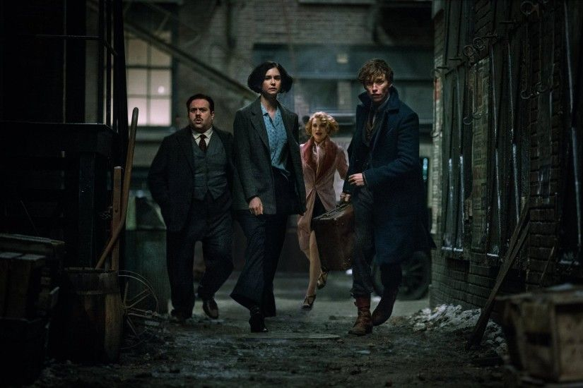 Meet Porpentina Goldstein In 'Fantastic Beasts, The New Leading Potter Lady  | Inverse