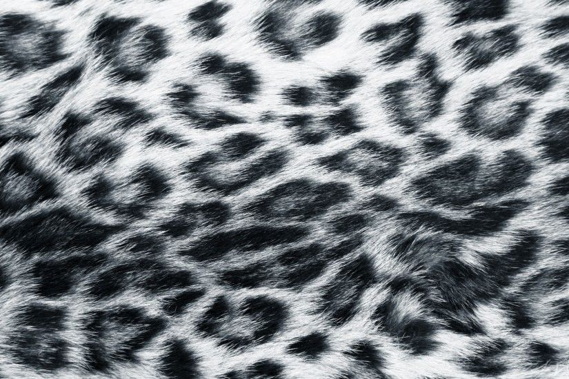 images actual animals with well defined patterns