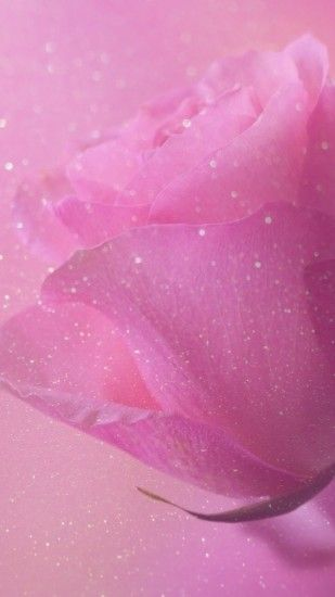 rose, sparkle, glitter, wallpaper, background, pink, pretty, girly, iPhone,  android, HD