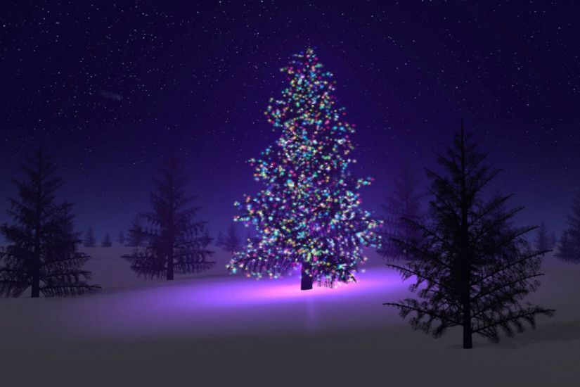 1920x1200 Outdoor Christmas tree HD Wallpaper 1920x1080 Outdoor Christmas  tree HD Wallpaper 1920x1200