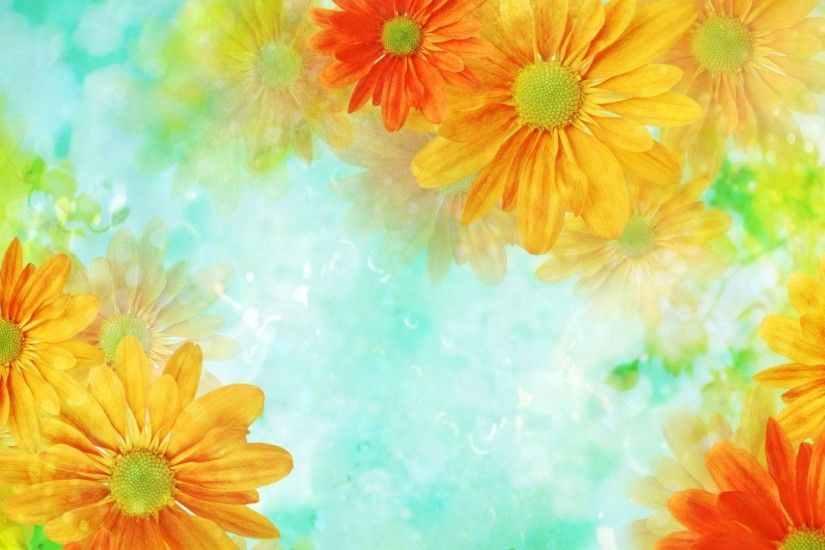 Name: 22241-orange-daisies- Share Your Wallpapers - Page 84