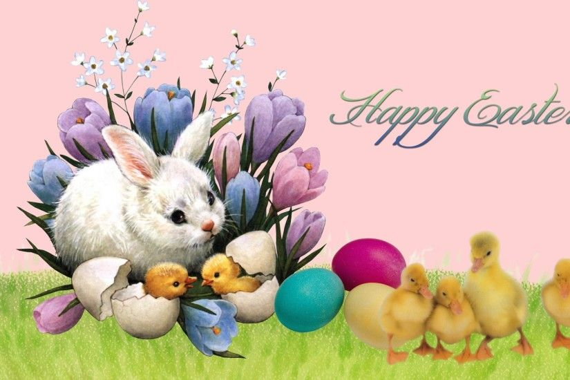 Easter bunny HD desktop widescreen pictures