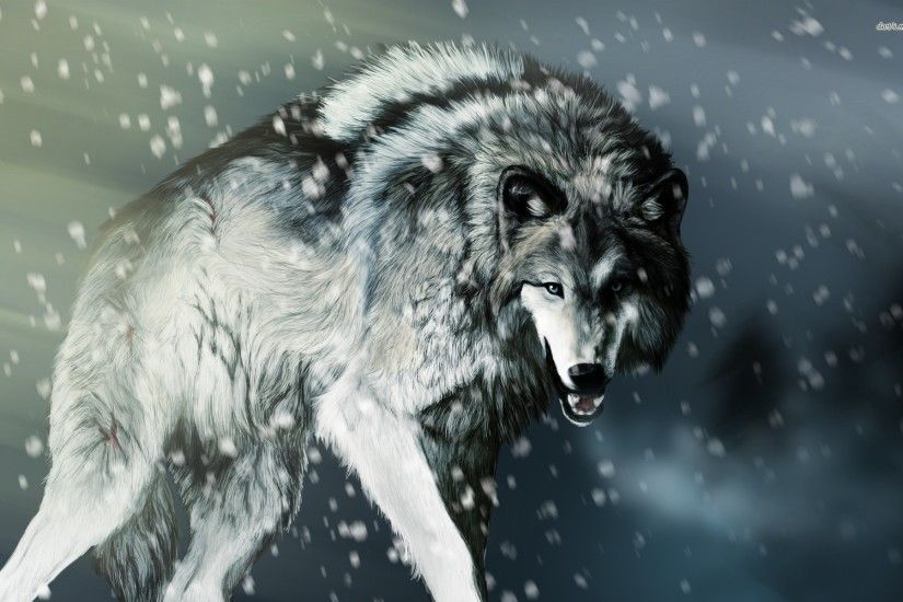 Angry wolf Animal HD desktop wallpaper, Wolf wallpaper - Animals no.